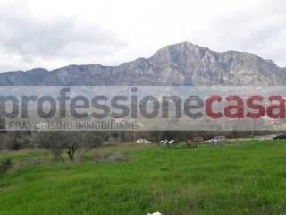 Foto - Terreno agricolo in Vendita a Pignataro Interamna