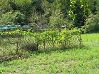 Foto - Terreno agricolo in Vendita a Pontassieve