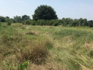 Foto - Terreno agricolo in Vendita a Poncarale
