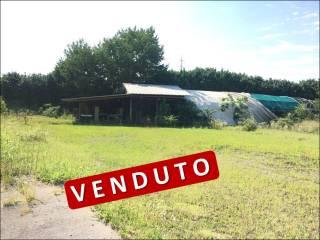 Foto - Terreno agricolo in Vendita a Melzo