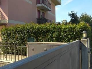 Foto - Appartamento buono stato, piano terra, Loreggia