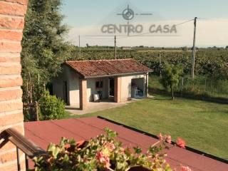 Foto - Rustico / Casale, ottimo stato, 487 mq, Lugo