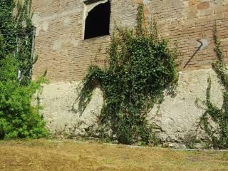 Foto - Rustico / Casale, da ristrutturare, 180 mq, Fauglia
