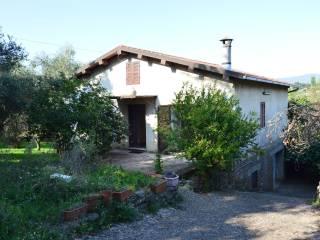 Foto - Villa Strada Provinciale Pedemontana I, Gallicano nel Lazio