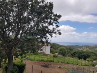 Foto - Terreno agricolo in Vendita a Santa Marinella
