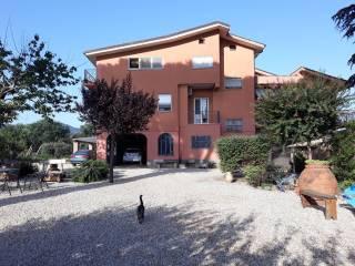 Foto - Rustico / Casale via Valle Zita 11, Colonna