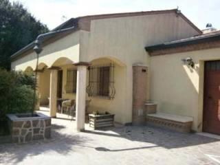 Foto - Casa indipendente all'asta via Strada Privata Cavallo, 741, Badia Polesine