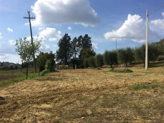 Foto - Terreno agricolo in Vendita a Certaldo