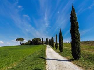 Foto - Rustico / Casale via della Stella, Cortona
