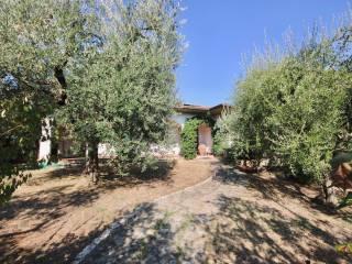 Foto - Villa, buono stato, 356 mq, Quarrata