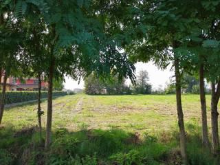 Foto - Terreno edificabile residenziale a Grontardo