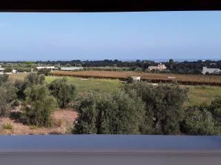 Foto - Villa unifamiliare Contrada Scizzo, Noicattaro
