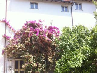 Foto - Appartamento all'asta via Tosco Romagnola 861, San Frediano A Settimo, Cascina