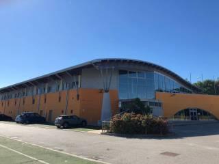 Immobile Affitto Portogruaro
