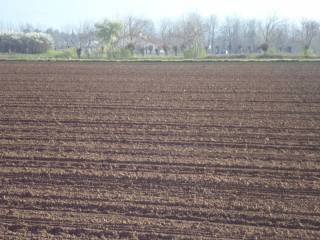 Foto - Terreno agricolo in Vendita a Pradamano