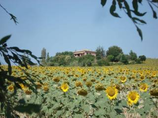 Foto - Villa via Chiavarini Doni, Terre Roveresche