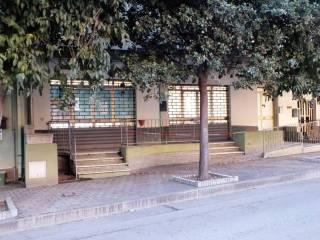 Immobile Affitto San Vito