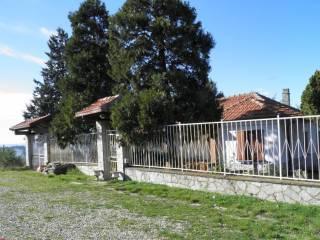 Foto - Villa, da ristrutturare, 200 mq, Tortona