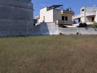 Foto - Terreno agricolo in Affitto a Monteroni di Lecce