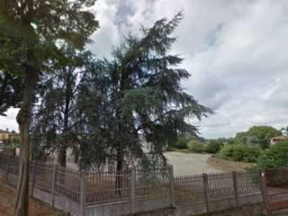 Foto - Terreno edificabile residenziale a Orio Litta