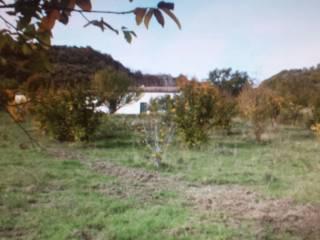 Foto - Terreno agricolo in Vendita a San Martino di Finita