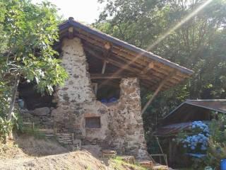 Foto - Terreno agricolo in Affitto a Grignasco