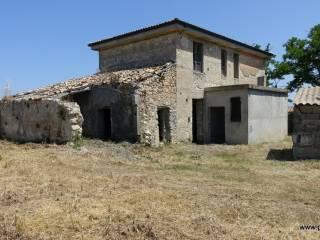 Foto - Rustico / Casale via Antonino Anile, Briatico