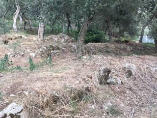 Foto - Terreno agricolo in Vendita a Vico Equense