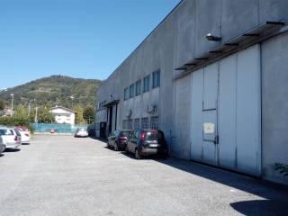 Immobile Affitto Albano Sant'Alessandro