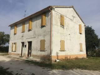 Foto - Rustico / Casale, da ristrutturare, 225 mq, Terre Roveresche