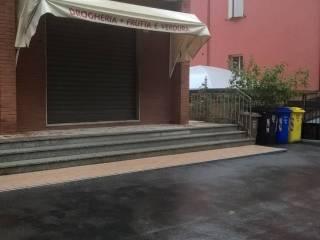 Immobile Affitto Langhirano