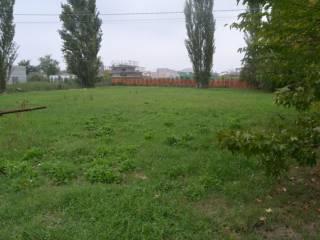 Foto - Terreno edificabile residenziale a Molinella