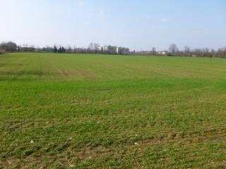 Foto - Terreno agricolo in Vendita a Nerviano
