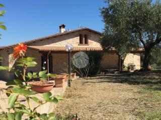 Foto - Villa via dei Pini, 3, Monte Maggiore, Montelibretti