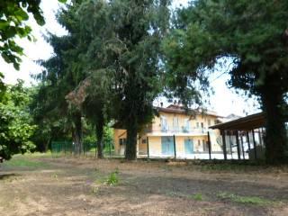 Foto - Rustico / Casale Località Valle, Piozzo