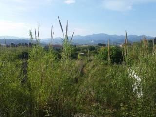 Foto - Terreno edificabile residenziale a Torregrotta