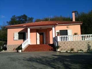 Foto - Villa Castellitoni, San Floro