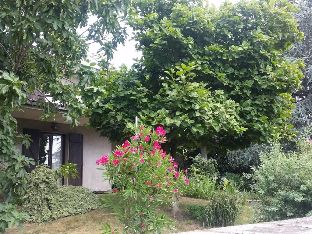 foto  Single family villa via Giovanni XXIII, Assago