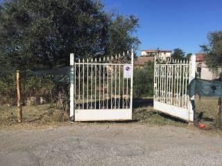 Foto - Terreno agricolo in Vendita a Capena