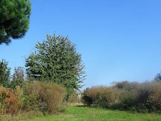 Foto - Terreno agricolo in Vendita a Lomazzo