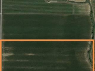 Foto - Terreno agricolo in Vendita a Pasiano di Pordenone