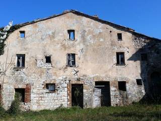 Foto - Terreno agricolo in Vendita a Sassoferrato