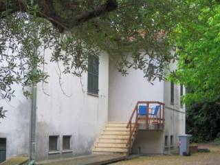 Foto - Casa indipendente strada provinciale della barchetta, Monsano