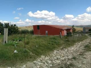 Foto - Terreno agricolo in Vendita a Lercara Friddi