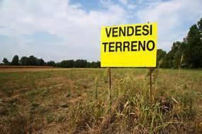 Foto - Terreno agricolo in Vendita a Badia Polesine