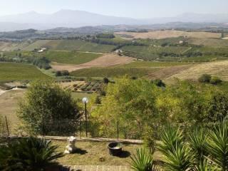 Foto - Villa, buono stato, 180 mq, Monteprandone