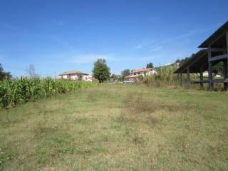 Foto - Terreno edificabile residenziale a Torrice