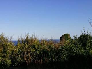 Foto - Terreno agricolo in Vendita a Aci Castello