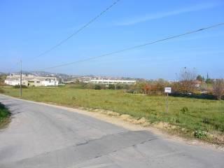 Foto - Terreno agricolo in Vendita a Montesilvano