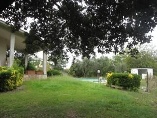 Foto - Villa, ottimo stato, 150 mq, Mazzano Romano